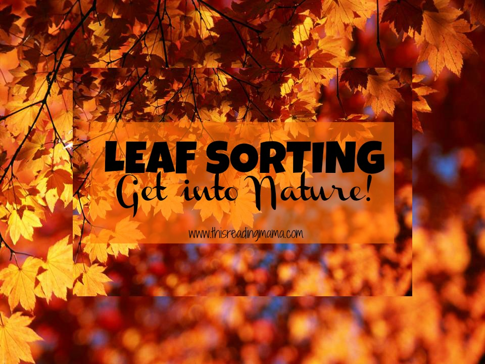 Leaf Sorting-Get Into Nature {This Reading Mama}