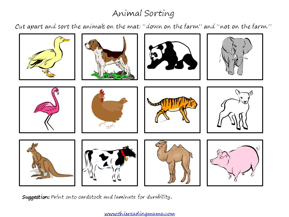 Animal Sorting pict - This Reading Mama
