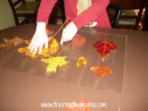 placing leaves on mat