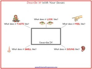 Photo of Describe It with the 5 Senses