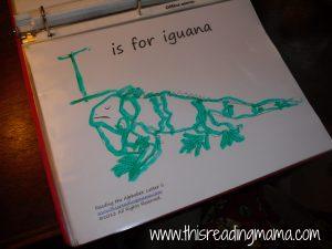 iguana tracing page