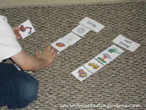 photo of little and big size sorting