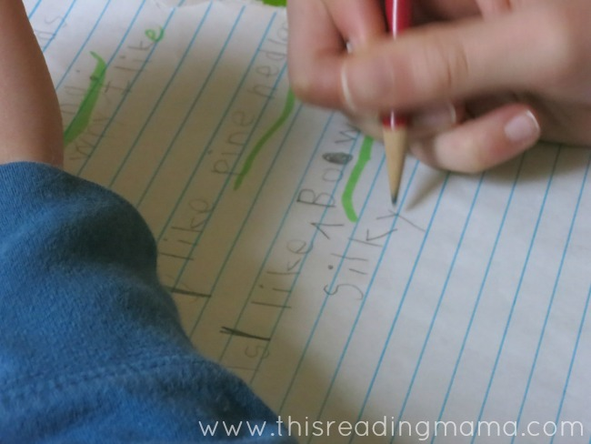inserting adjectives into writing for kids