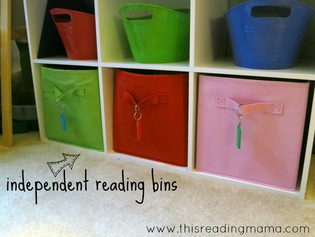 independent reading bins
