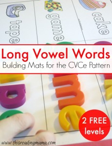 Building Long Vowel Words {CVCe}