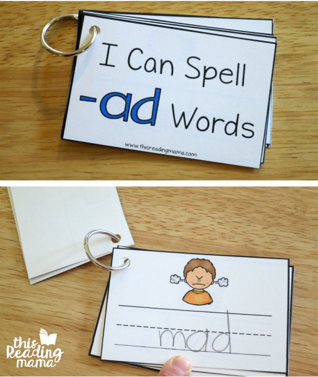 ad word family flip book this reading mama
