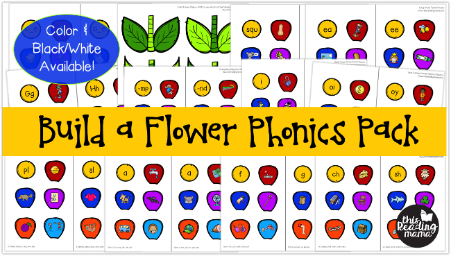 Build a Flower Preview - 11 different phonics skills covered - This Reading Mama