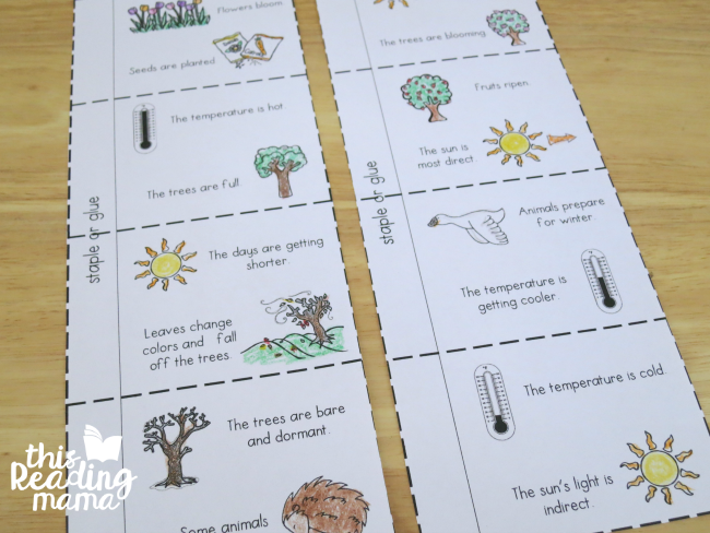 4 seasons flip book pages for older learners
