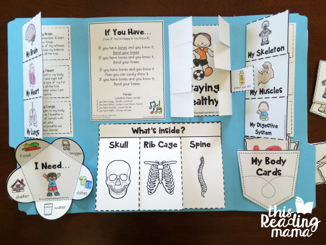 My Human Body Interactive Notebook - what's inside - This Reading Mama
