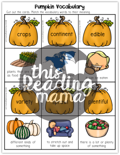 Pumpkin Vocabulary Sample from Pumpkin Literacy Activities - This Reading Mama