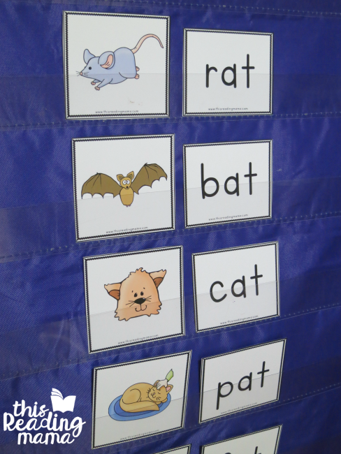 pocket chart word family cards from Reading the Alphabet Lesson 7