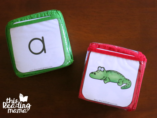 alphabet and alphabet picture pocket cube inserts