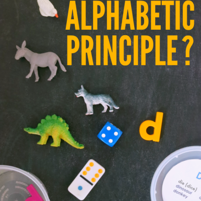 What is the Alphabetic Principle?