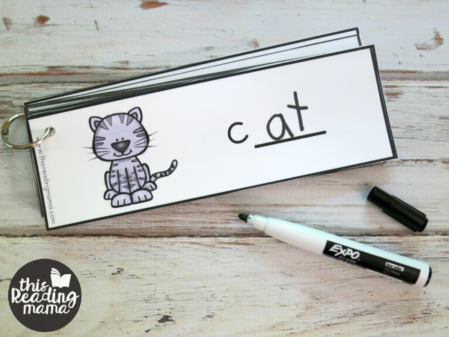 word family words - write and read dry erase cards
