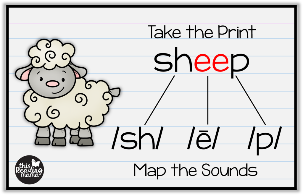 Orthographic Mapping Words - Sheep - This Reading Mama